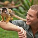Is it Illegal to Own a Monkey in Canada?