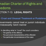 Section 12 of The Charter of Rights and Freedoms