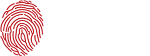 Toronto Defence Lawyers